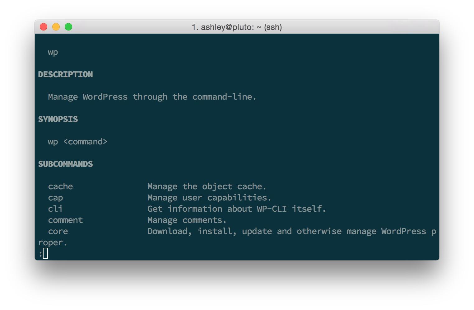 WP-CLI Output