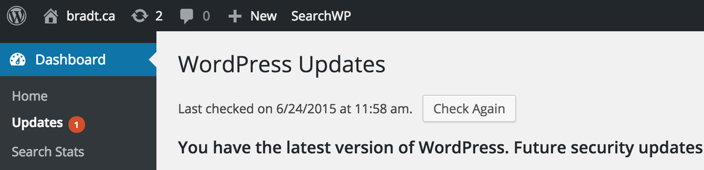 Updates page in the WordPress dashboard