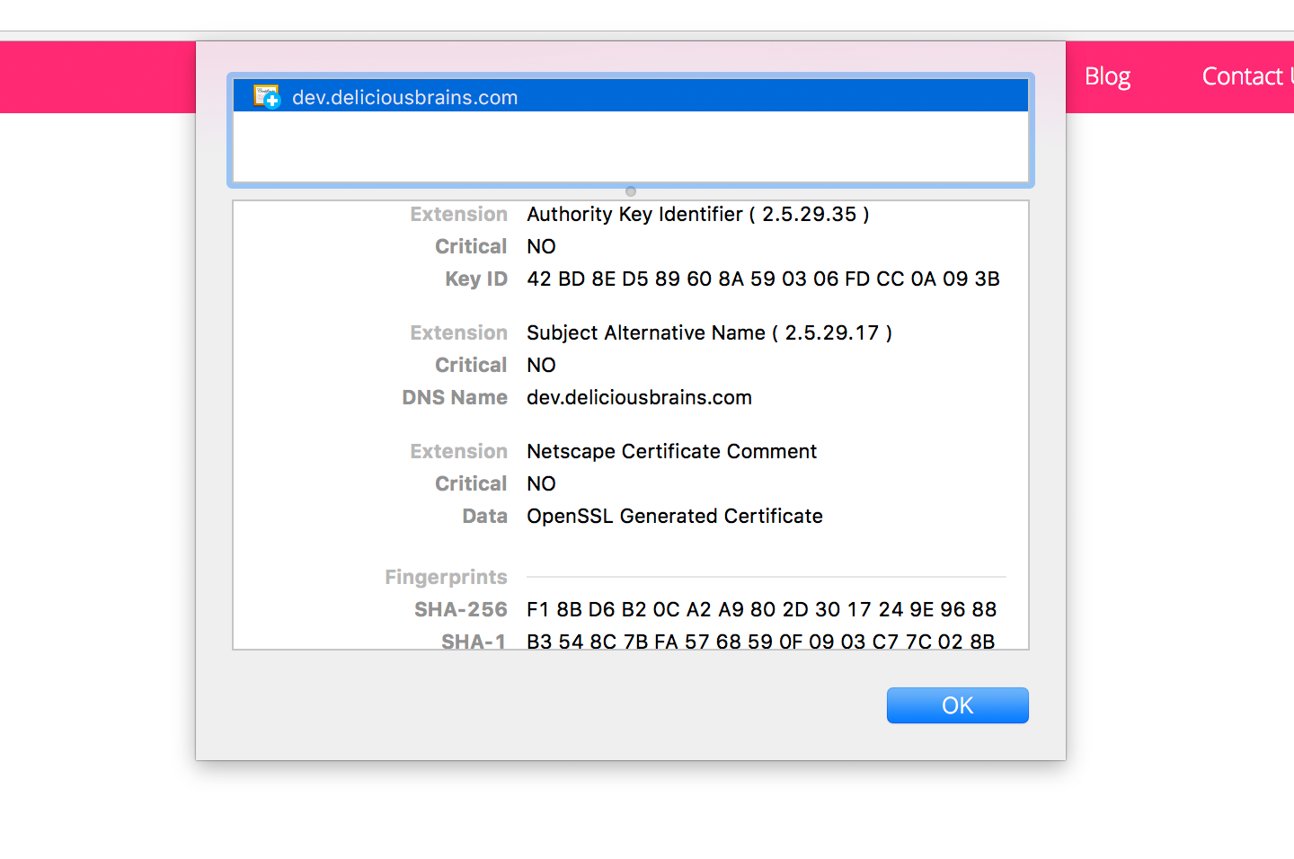 Screenshot of Chrome browser showing expanded details of self-signed certificate