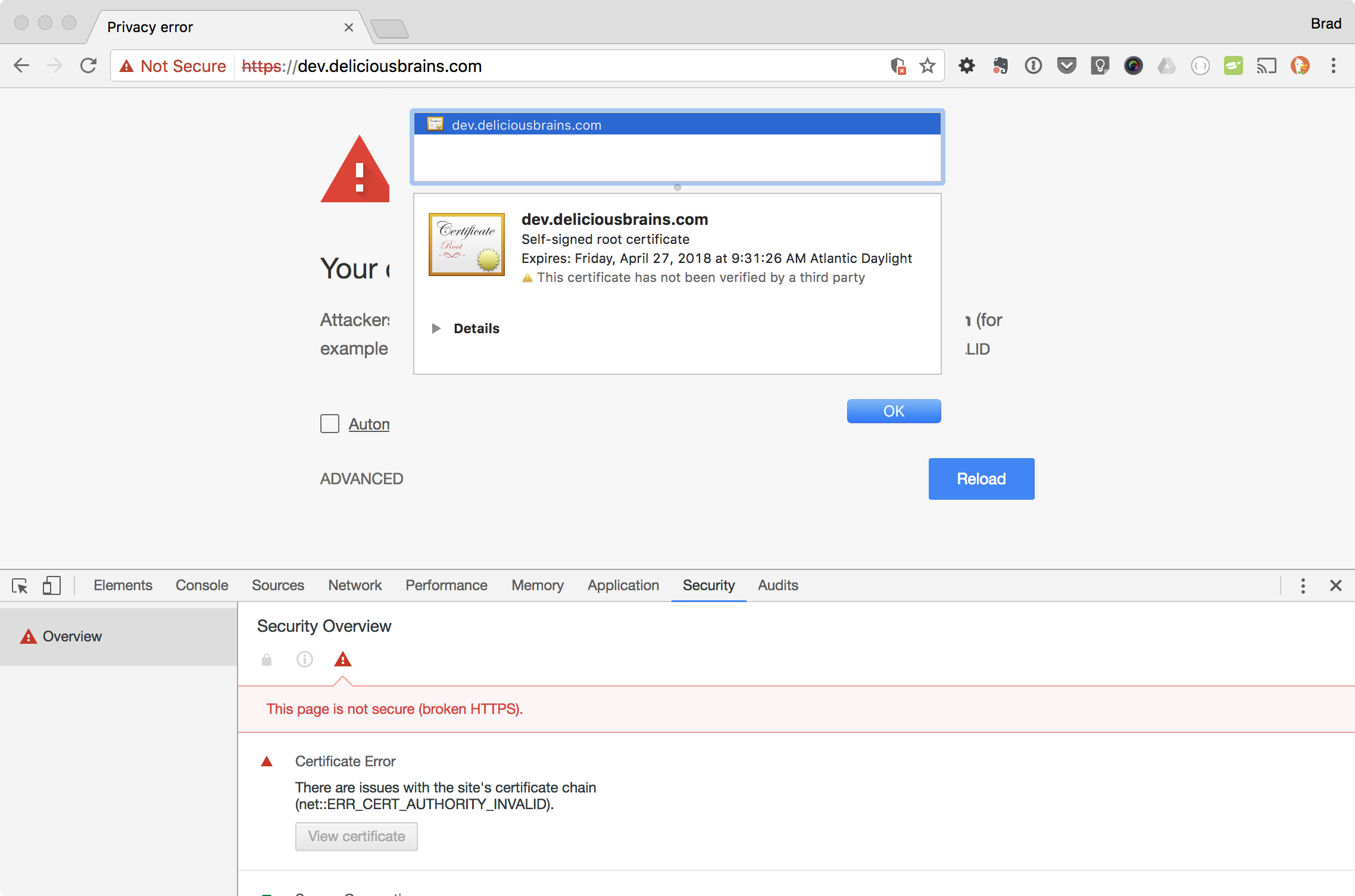 Screenshot of Chrome browser viewing insecure self-signed certificate