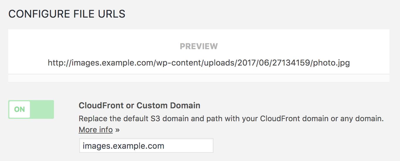 Configure File URLs box with custom domain