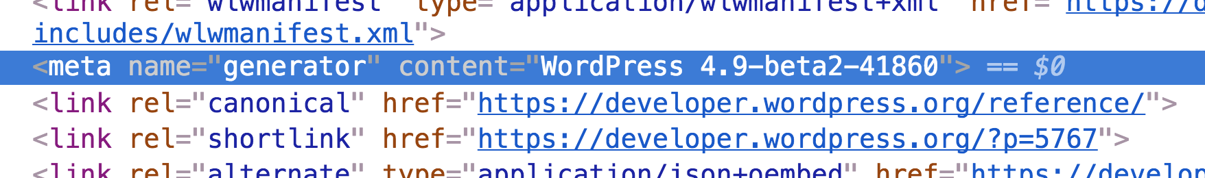 Screenshot of meta generator tag showing WordPress version