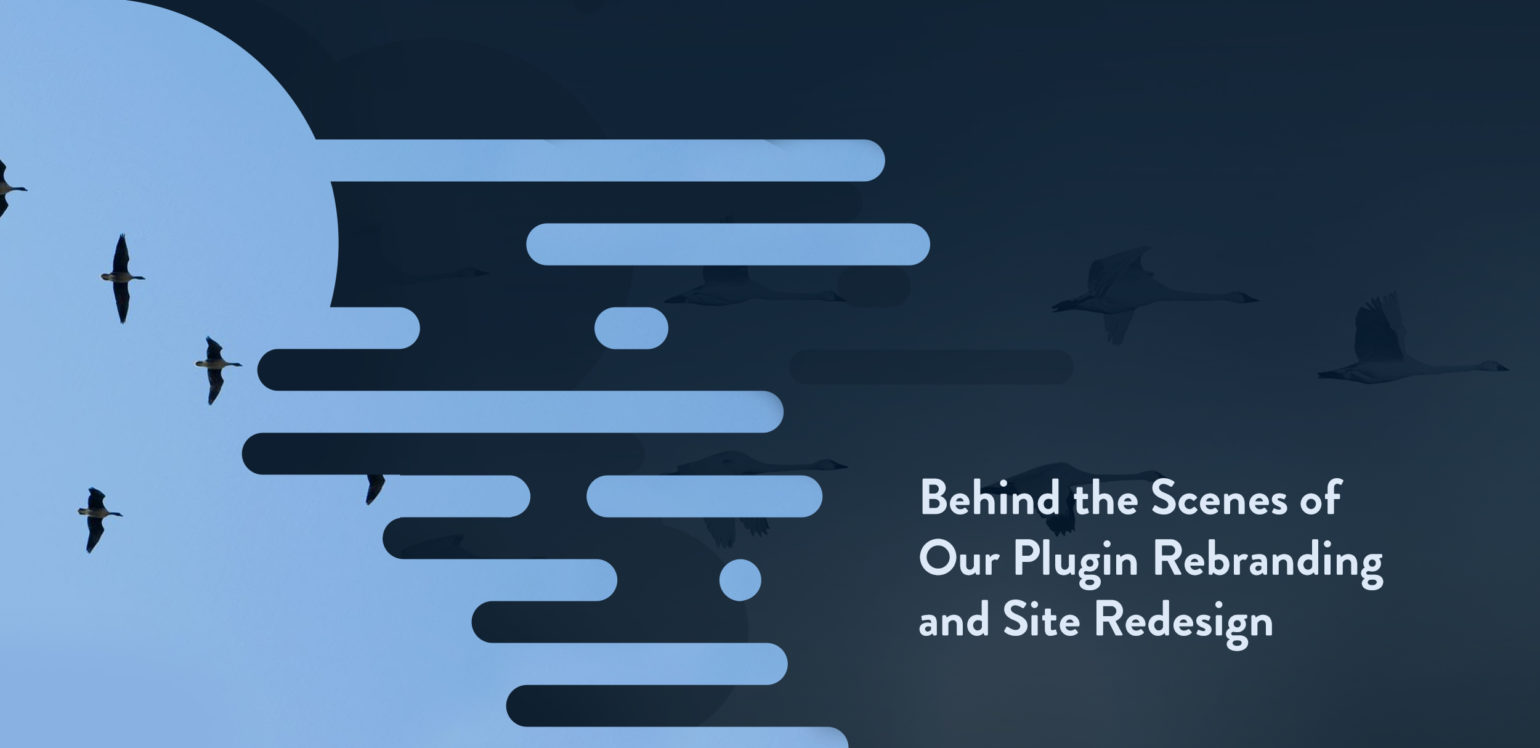 title image with old WP Migrate DB Pro transitioning to new branding
