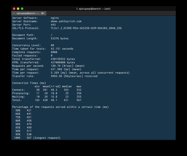 ApacheBench CLI output