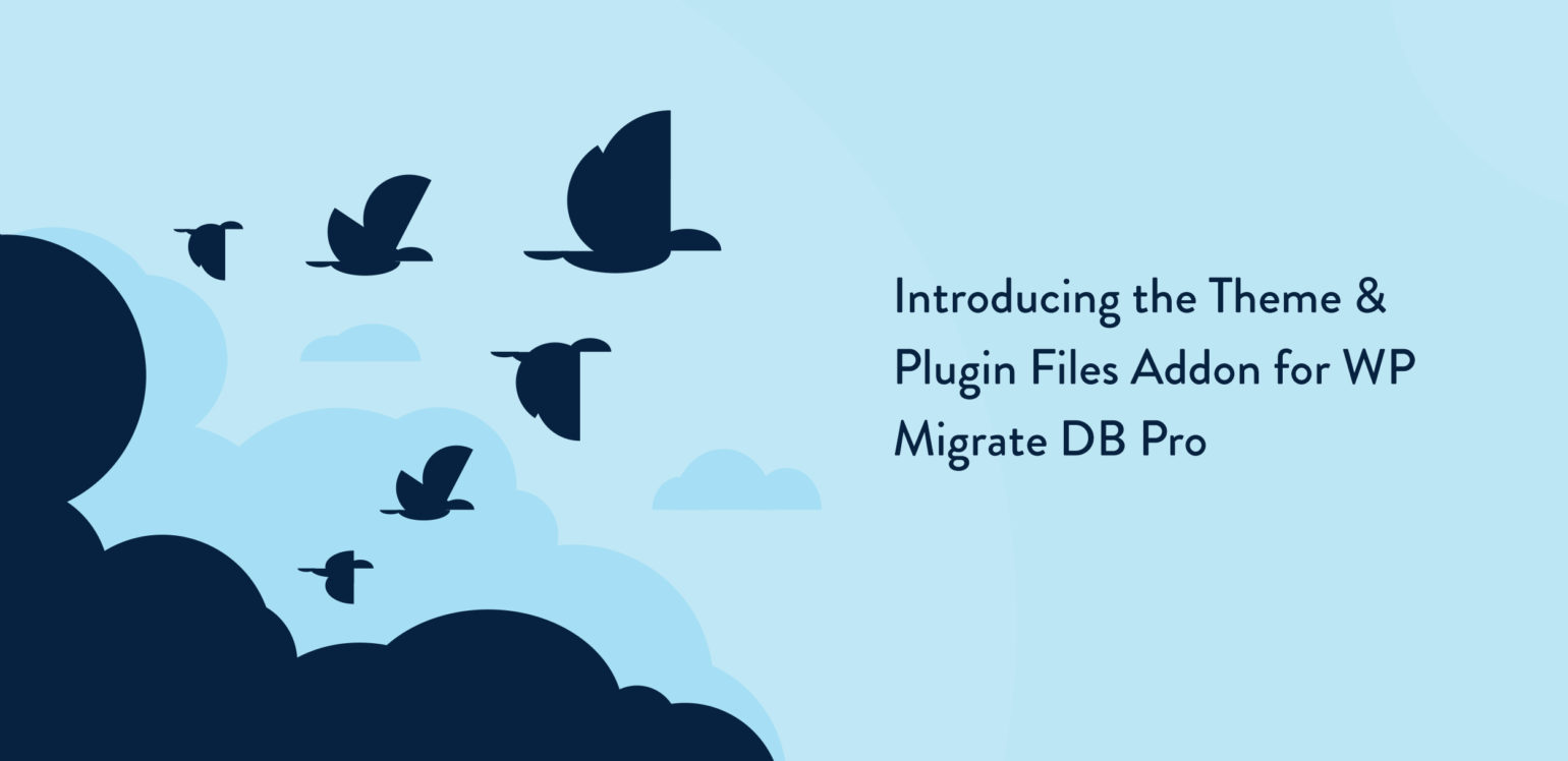 introducing the theme plugin files addon for wp migrate db pro