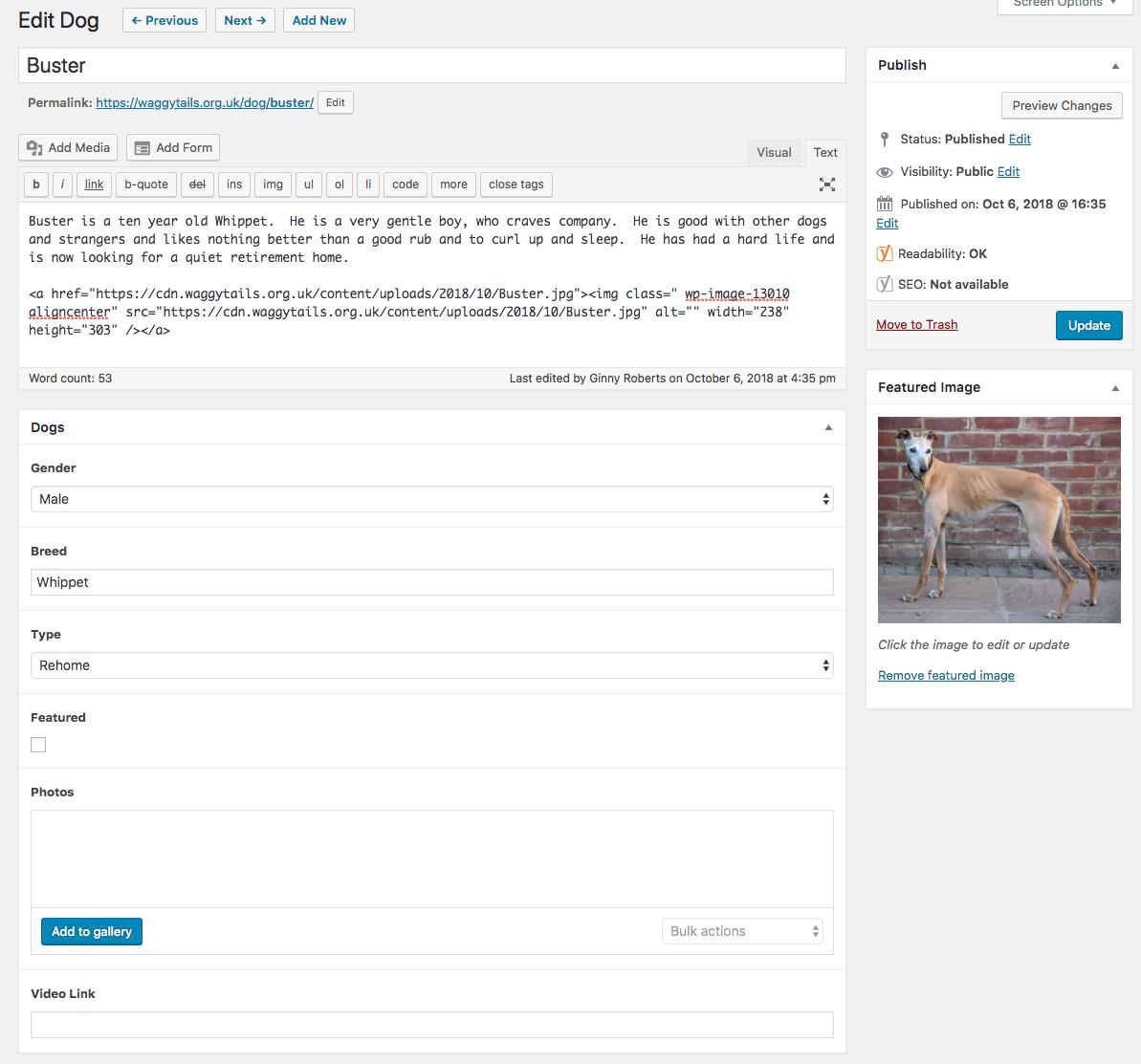 A post edit screen showing filled custom fields.